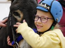 therapy donkey helps girl speak